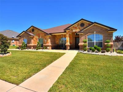 Single Family Home For Sale: 3808 Dodge City Dr