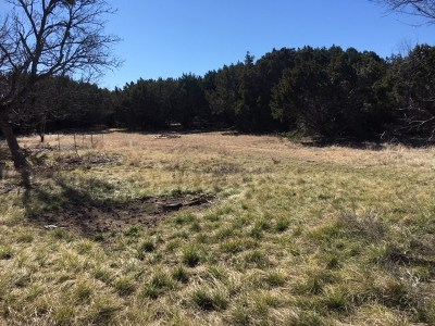 Lampasas Farm For Sale: 02 County Road 3930