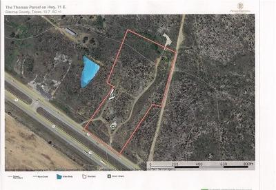 Bastrop County Residential Lots & Land For Sale: 1030 Highway 71