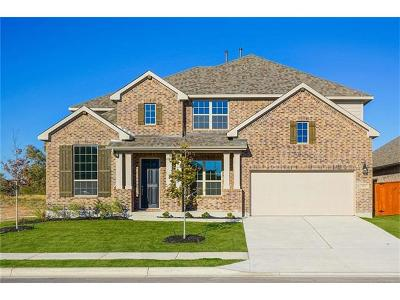 Liberty Hill Single Family Home For Sale: 2013 Discovery Well Dr
