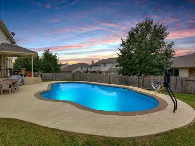 Teravista Single Family Home For Sale: 1008 Placid Creek Ct
