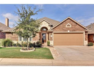 Austin Single Family Home For Sale: 417 Stone View Trl