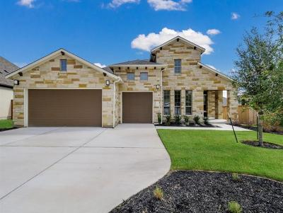 Georgetown Single Family Home For Sale: 229 Blue Agave Ln