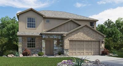 Pflugerville Single Family Home For Sale: 21713 Windmill Ranch Ave