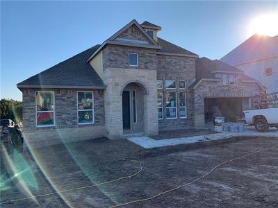 Austin Single Family Home For Sale: 393 Stone River Dr