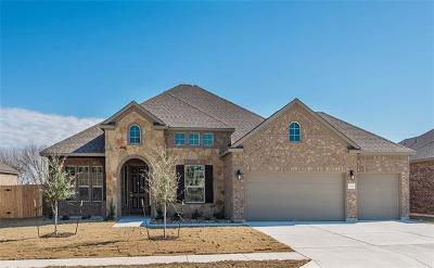 Pflugerville Single Family Home For Sale: 20101 Navarre Ter