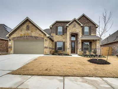 Hays County, Travis County, Williamson County Single Family Home For Sale: 12507 Madero Dr