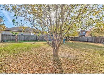 Hutto Single Family Home For Sale: 125 Altamont St