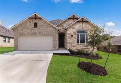Austin TX Single Family Home For Sale: $468,956