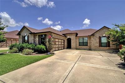 Pflugerville Single Family Home Pending - Taking Backups: 19113 Pencil Cactus Dr