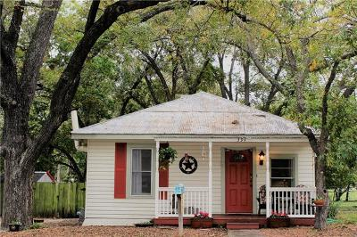 New Braunfels Single Family Home For Sale: 394 E Mather St