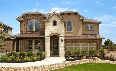Buda, Kyle Single Family Home For Sale: 123 Pond View Pass