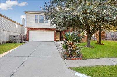 Pflugerville Single Family Home For Sale: 801 Palitine Ln