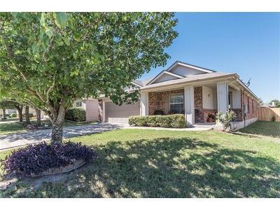 Kyle Single Family Home For Sale: 111 Remington Dr