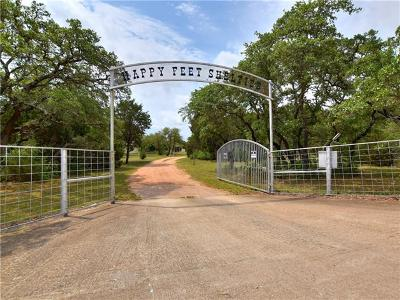 Burnet County Single Family Home For Sale: 7145 County Road 252