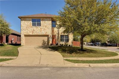 Buda Single Family Home For Sale: 313 Dark Horse Ln