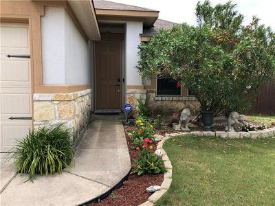 Pflugerville Single Family Home For Sale: 19024 Mangan Way