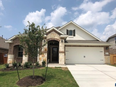 Williamson County Single Family Home For Sale: 221 Allegrini St