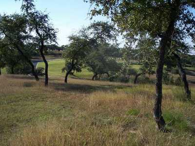 Spicewood Residential Lots & Land For Sale: 225 Hidden Hills Dr