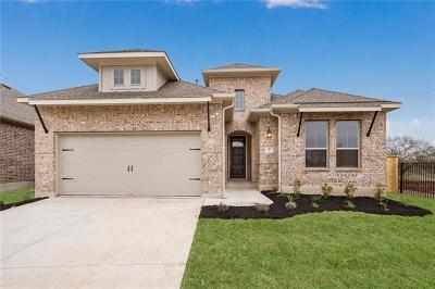 San Marcos Single Family Home For Sale: 117 Tulip Garden Trl