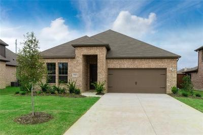 Leander Single Family Home For Sale: 417 Mistflower Springs Dr