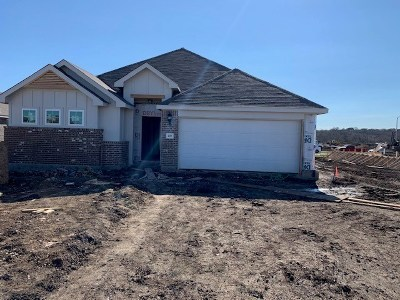 Hutto Single Family Home For Sale: 218 Clearlake Dr