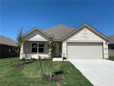 Pflugerville Single Family Home For Sale: 19012 Scoria Dr