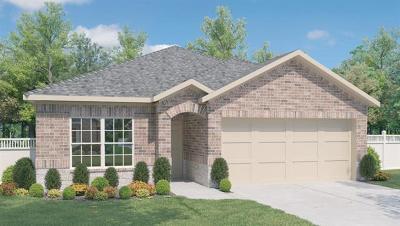 Kyle  Single Family Home For Sale: 171 Cherry Blossom Dr