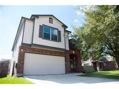 Kyle Single Family Home For Sale: 721 Abundance Ln