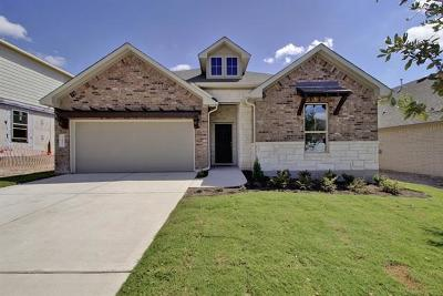Round Rock Single Family Home For Sale: 6852 Catania Loop