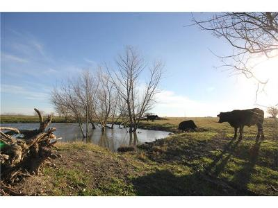 Taylor Farm For Sale: County Rd 413