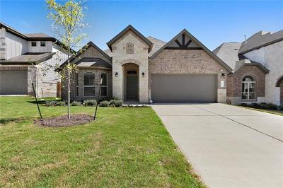 Austin Single Family Home For Sale: 1100 Goldilocks Ln