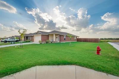 Lockhart Single Family Home For Sale: 1601 Shenandoah Trl