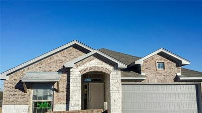 Pflugerville Single Family Home For Sale: 20121 Navarre Ter