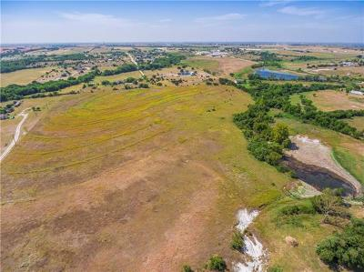 Burnet County, Lampasas County, Bell County, Williamson County, llano, Blanco County, Mills County, Hamilton County, San Saba County, Coryell County Farm For Sale: 2190 County Road 105