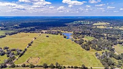 Bell County, Burnet County, Comal County, Fayette County, Hays County, Lampasas County, Lee County, Llano County, San Saba County, Travis County, Williamson County Farm For Sale: Piney Creek Rd