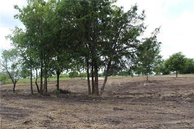 Del Valle Residential Lots & Land For Sale: 2864 Fm 812