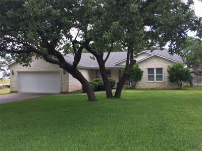 Burnet Single Family Home For Sale: 604 S Chaparral