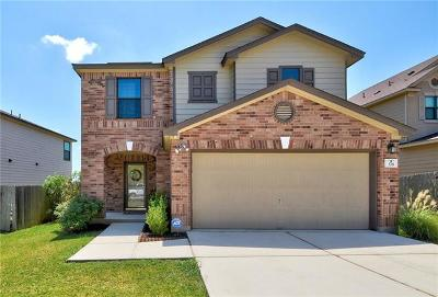Kyle Single Family Home For Sale: 378 Tower Dr
