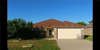 Single Family Home For Sale: 140 Calcite Ln
