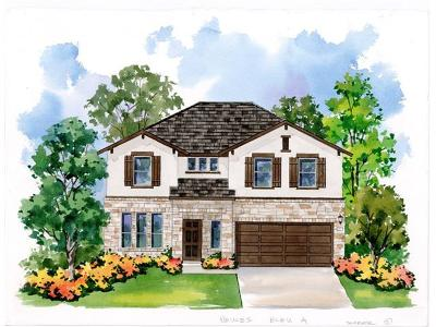 Hays County Single Family Home For Sale: 128 Mary Max Circle
