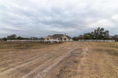 Salado Single Family Home For Sale: 12299 Blackberry Rd