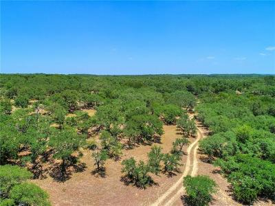 Wimberley Farm For Sale: Lone Man Mountain
