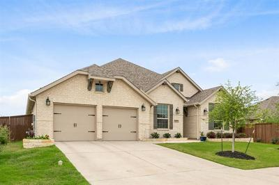 Liberty Hill Single Family Home For Sale: 421 Pendent Dr