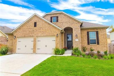 Pflugerville Single Family Home For Sale: 20708 Snow Bunting