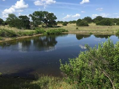 Burnet County, Lampasas County, Bell County, Williamson County, llano, Blanco County, Mills County, Hamilton County, San Saba County, Coryell County Farm For Sale: 1600 County Road 268