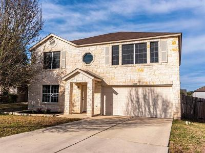 Austin Single Family Home For Sale: 11128 Currin Ln