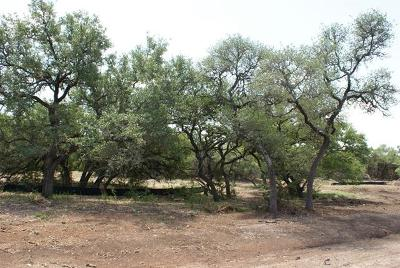 Dripping Springs Residential Lots & Land Pending - Taking Backups: Calvary Cove Lot 23