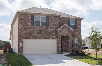 Austin Single Family Home For Sale: 14203 Magano Cv