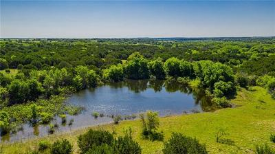 Burnet County, Lampasas County, Bell County, Williamson County, llano, Blanco County, Mills County, Hamilton County, San Saba County, Coryell County Farm For Sale: 3885 Harmon Rd